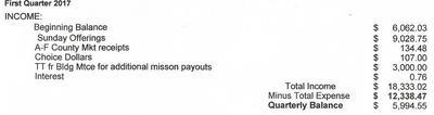 Treasurer's Report Format